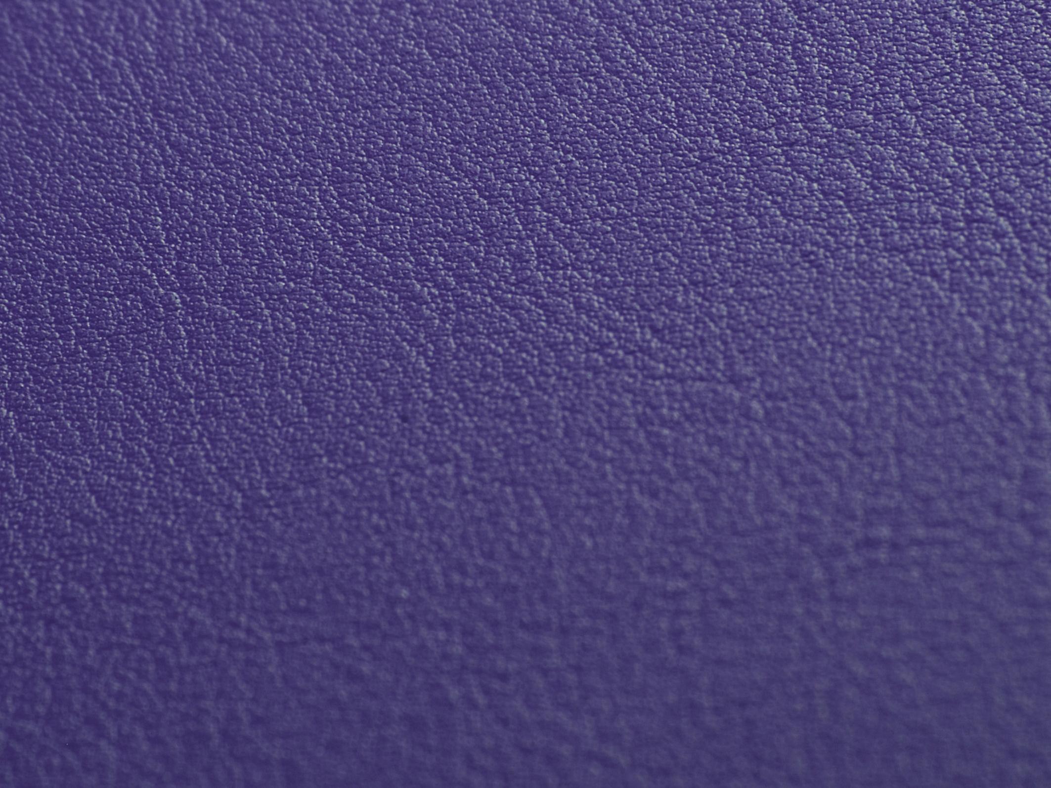 81_violett