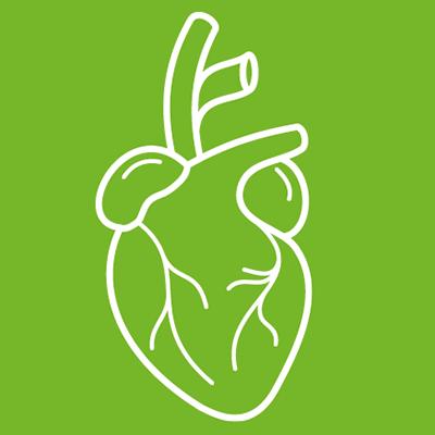 Kardiovaskular_icon